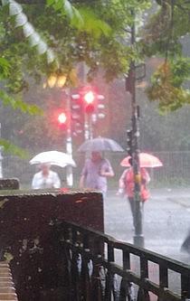 Drei Menschen gehen bei Starkregen mit ihren Schirmen bei roter Ampel über die Straße.