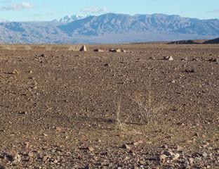 Eine Wüste.