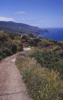 Wanderweg entlang an einer bergigen Küste.