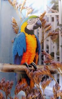 Ein Papagei aus Papier hockt auf einem Ast aus Papier.
