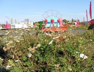 Der Minigolfplatz auf dem Tempelhofer Feld aus Froschperspektive.