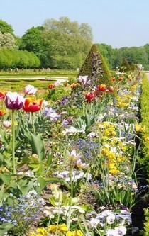 Ein buntes Blumenbeet im Frühling.