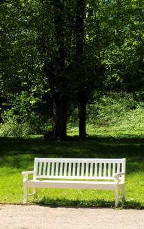 Eine weiße Bank unter einem Baum in einem sommerlichen Park.