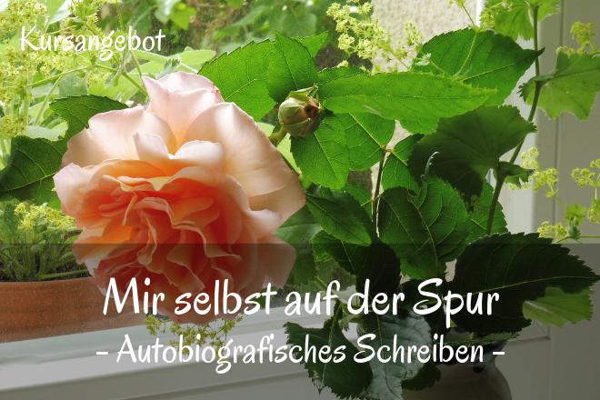 Bild: Rose im Fenster | Texte: Mir selbst auf der Spur - Autobiografisches Schreiben | Sabine Lowsky